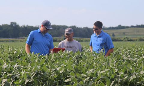 Servi-Tech agronomists show a grower some data to help his operation.