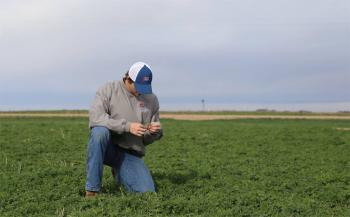 A Servi-Tech agronomist checks a field.