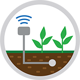Soil Moisture Monitoring